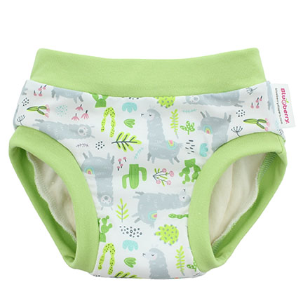 Blueberry diapers llamas trainers