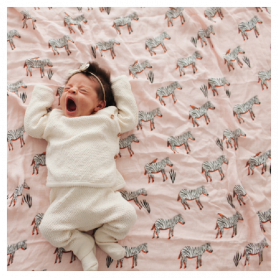 Little Unicorn Musselina Swaddle Bambu Zebra